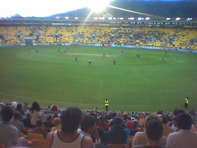 Cricket_dusk